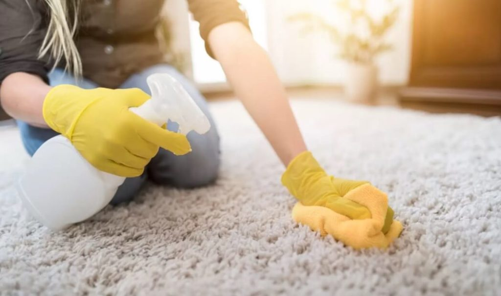 How to Remove Vomit Smell Out of Carpet